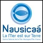Formation à Nausicaá